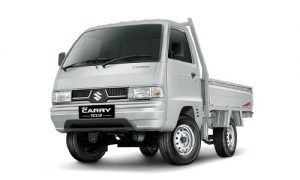 Carry PU 2018