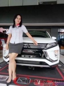 Mitsubishi Gambir