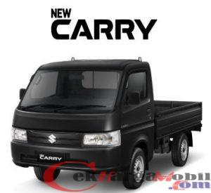 New Carri Pick UP 2021